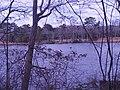 Dirickson Creek north of Fenwick West, Delaware.jpg