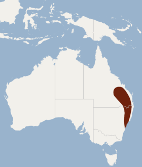 Distribution of Chalinolobus dwyeri.png