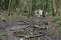 Disused railway line in Park Wood, Welsh Bicknor - geograph.org.uk - 724564.jpg