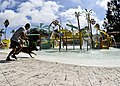 Dog waterpark (10555978556).jpg