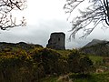 Dolbadarn castle in spring. (17194591056).jpg
