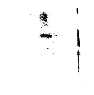 Donald Jones (actor)