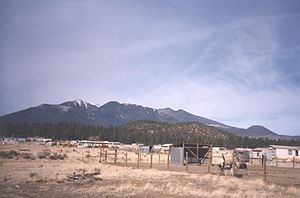 Doney Park, Arizona - View of San Francisco Peaks from Doney Park