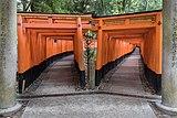 Double torii path at Fushimi Inari Taisha Shrine, Kyoto, Japan.jpg