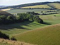 Downland above Coombe, East Meon - geograph.org.uk - 1593165.jpg