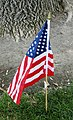 Dragonfly on flag (43450099234).jpg