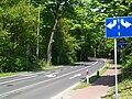 Droga na Łęczycę obok dworca PKP w Puszczykowie.jpg