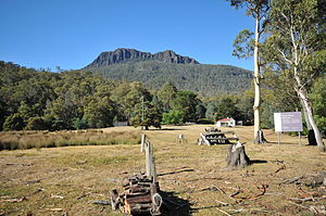 Great Western Tiers - Image: Drys Bluff from the main road