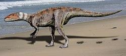 Dubreuillosaurus NT.jpg