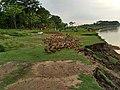 Ducking on the bank of the river Someshwari .jpg