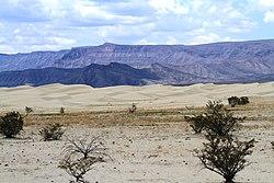 Dunas y sierra - panoramio.jpg