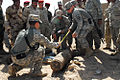 EOD training ends with explosive results DVIDS287499.jpg