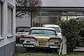 Edsel - Flickr - 7C0.jpg