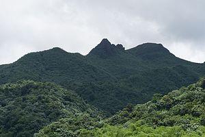 El Yunque (Puerto Rico) - Image: El Yunque close up