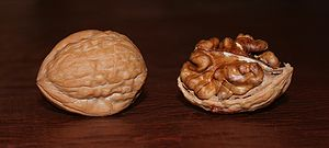 A whole and shelled walnut.