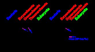 Crenarchaeota - Image: Eocyte hypothesis