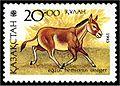 Equus hemionus onager - stamp.jpg