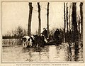 Evacueren vee na overstroming 1917 Eemgebied - Amersfoort.jpg