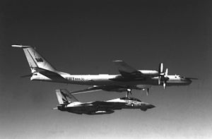 F-14A VF-111 intercepting Indian Tu-142MK-E.JPEG
