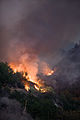 FEMA - 33377 - Burning vegitation in California.jpg