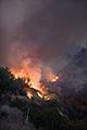 FEMA - 33377 - Burning vegitation in California.jpg