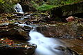 Fall-creek-autumn-waterfalls-west-virginia - West Virginia - ForestWander.jpg