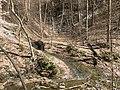 Fall Run Park in Shaler Township, late winter - 25.jpeg