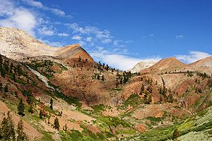 Pacific Crest Trail - Golden Trout Wilderness