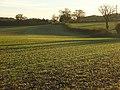 Farmland, Dunsden - geograph.org.uk - 1059251.jpg