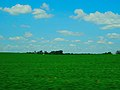 Farmland near Cooksville - panoramio.jpg