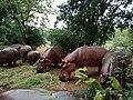 Fatty hippos.jpg