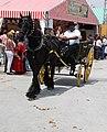 Feria de Mayo, Torrevieja 2010 (4594734204).jpg