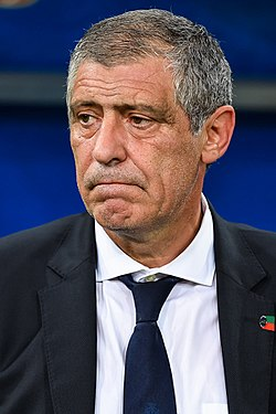 Image illustrative de l'article Fernando Santos