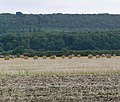 Field and bales towards Stathern Woods - geograph.org.uk - 982729.jpg