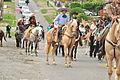 Fiestas Patrias Parade, South Park, Seattle, 2015 - 297 - the horses (21582822422).jpg