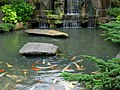 Fish Pond in Longshan Temple 龍山寺魚池 - panoramio.jpg