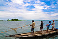 Fishing in the haor with Seine net.jpg