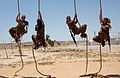 Flickr - Israel Defense Forces - Climbing Up the Infantry Command Rope, Graduating an Officers Course.jpg