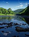 Flickr - Nicholas T - Pine Creek (1).jpg