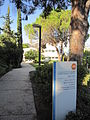 Flickr - Technion - Israel Istitute of Technology - IMG 1096.jpg