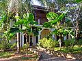 Flickr - archer10 (Dennis) - Belize-0967.jpg