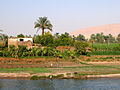 Flickr - archer10 (Dennis) - Egypt-4C-036.jpg