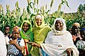 Flickr - usaid.africa - USAID works with Nigerians to improve agriculture, health, education, and governance.jpg