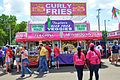 Florida Strawberry Fest 2012 Curley Fries.jpg
