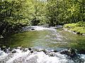 Flow of the river Gradac.JPG