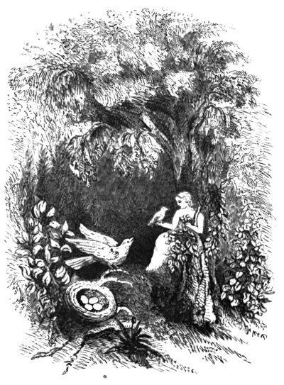 Flower Fables (Alcott), image facing page 112.png