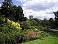 Flowerbed at St James's Park - geograph.org.uk - 1425866.jpg