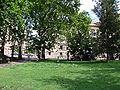 Flying Pigeons in Park, Budapest.JPG