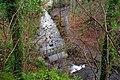 Footbridge, Glenoe Glen (5) - geograph.org.uk - 639568.jpg