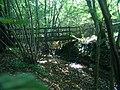 Footbridge to SE of Tenterden - geograph.org.uk - 64878.jpg